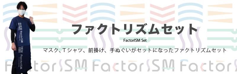 ファクトリズムセット